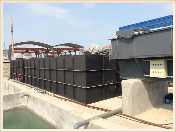 小型养殖污水处理设备--洛阳天泰